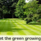 Lawn care – let's get the green growing!