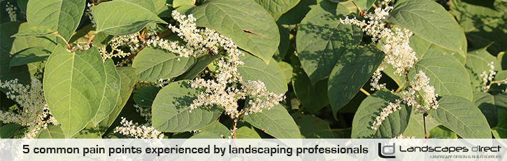 5 common pain points experienced by landscaping professionals